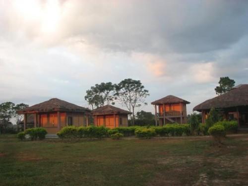 Jia Bhorelli Wild Resort, Tezpur