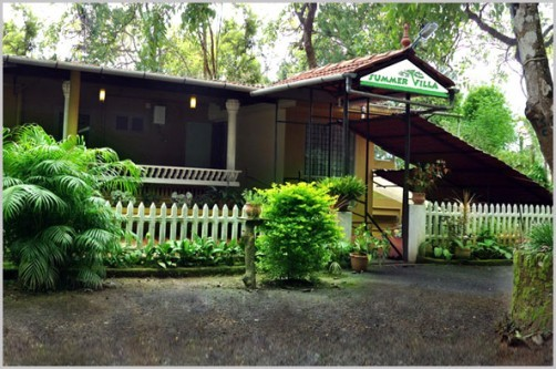 The Summer Villa, Wayanad