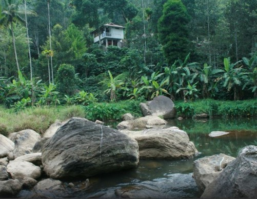 River Rock Homestay, Munnar