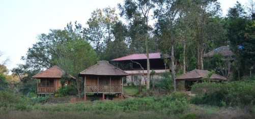 Jungle Retreat Wayanad, Wayanad