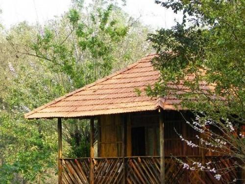 Jungle Retreat Wayanad, Wayanad