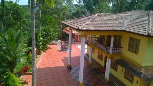 Pappy's Nest Resort, Wayanad